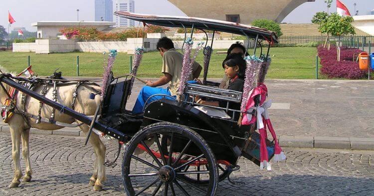 Alat Transportasi Darat Tradisional