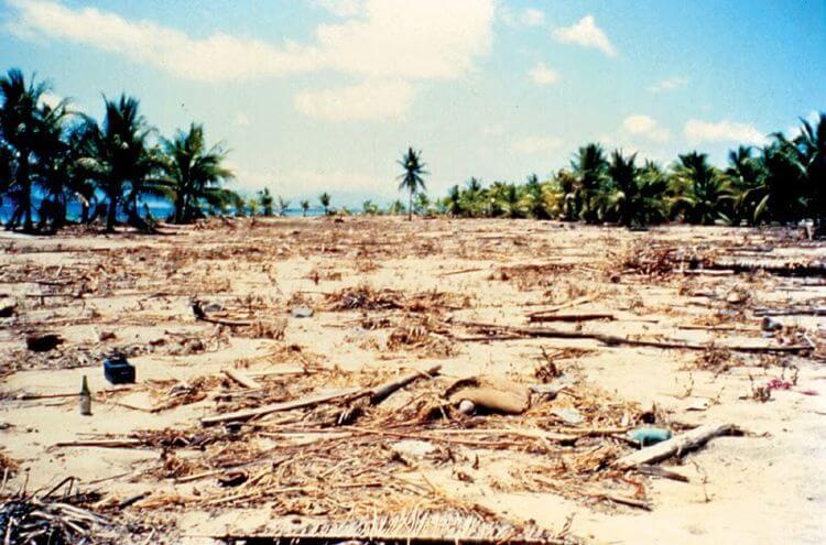 bencana alam tsunami ende