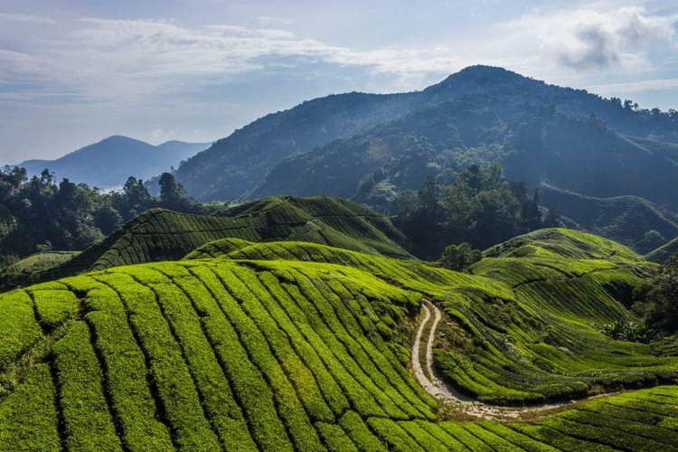 tempat wisata di malaysia yang paling asyik