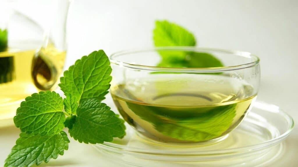 Cara Membuat Infused water untuk detox